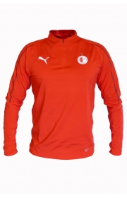 Mikina Puma Final Training 1/4 zip top