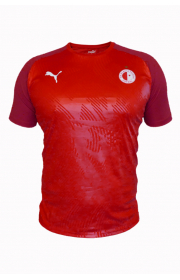 Puma CUP Training T-Shirt Red