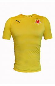 Puma Goalkeeper Yellow Jersey